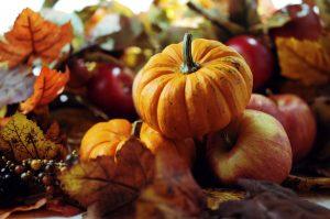 harvest-comes-together-at-frosts