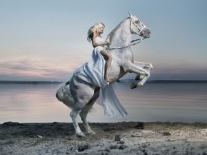 white-horse-with-lady-rider